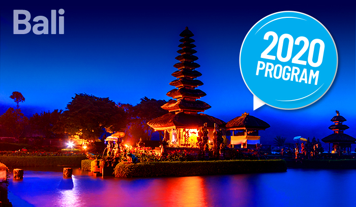 Bali-Leading Innovation And Strategy